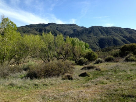 Sespe_Wilderness_Topography_4